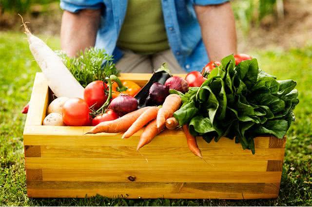 Como uma alimentação balanceada pode evitar a fadiga. Entenda e adote