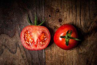 Evite erros quando for comprar tomate. Veja como bem escolher esse fruto