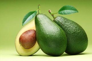 Vai comprar abacate? Então você precisa dessas dicas para escolher o melhor fruto