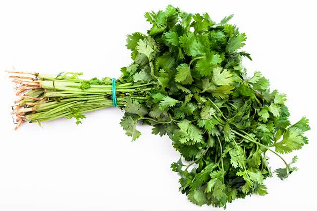 Não sabe escolher coentro? Aprenda como comprar esse vegetal sem cometer erros