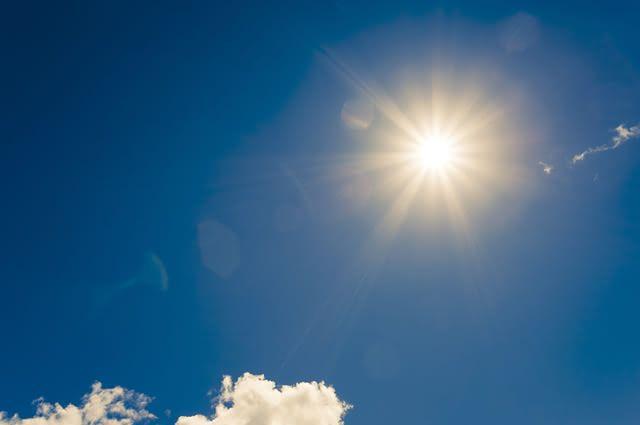 A vitamina D é uma substância importante para a manutenção do tecido ósseo