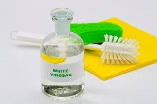 Solução de vinagre para uso em geral é tudo o que você precisava