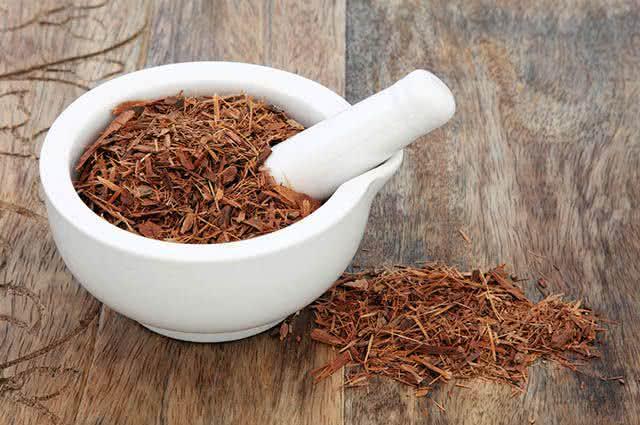 Conheça receitas de chás afrodisíacos para mulheres - Catuaba