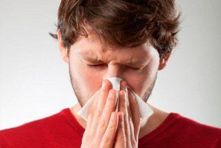 8 receitas de chás descongestionantes para o nariz
