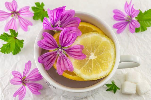 Chás para despertar! Chá de Malva