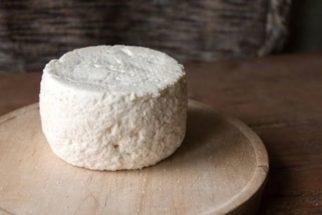 Veja os benefícios e propriedades do queijo de cabra e aprenda receita