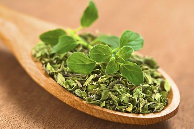 O chá de orégano é uma ótima receita natural para quem pretende emagrecer de forma saudável