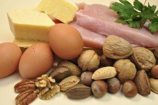 As 10 melhores fontes de proteínas