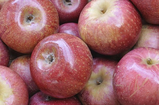 Para usufruir das vantagens nutricionais da maçã é preciso escolhê-la bem