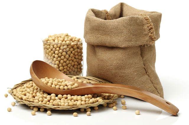 A soja é um grão rico em proteína vegetal