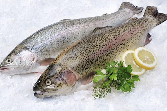 A carne de peixe possui propriedades anti-inflamatórias indicadas para tratar febre reumática
