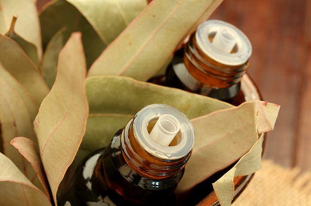 O óleo essencial de eucalipto pode ser usado no fundo do lixeiro