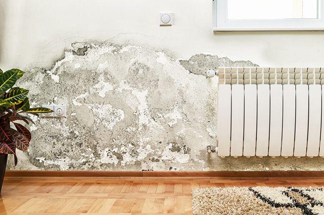 É possível tirar o cheiro de umidade da casa com carvão, bicarbonato e cloro