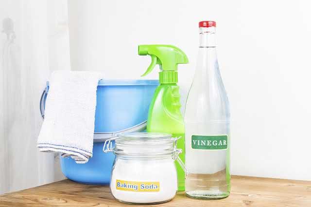 O vinagre é um poderoso antifúngico sendo muito usado para a limpeza de geladeiras e fogões