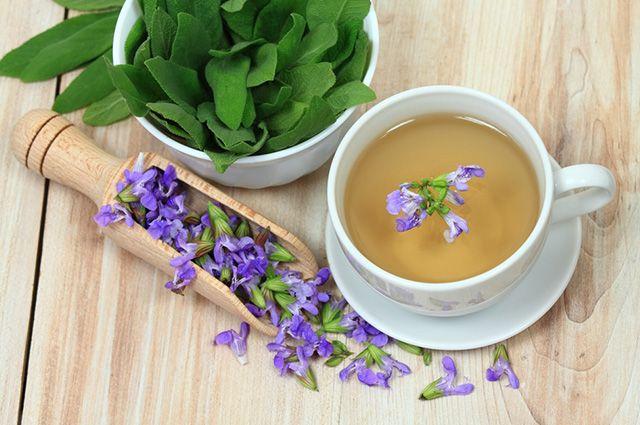 O chá de sálvia e louro é um dos melhores chás para perder a barriga