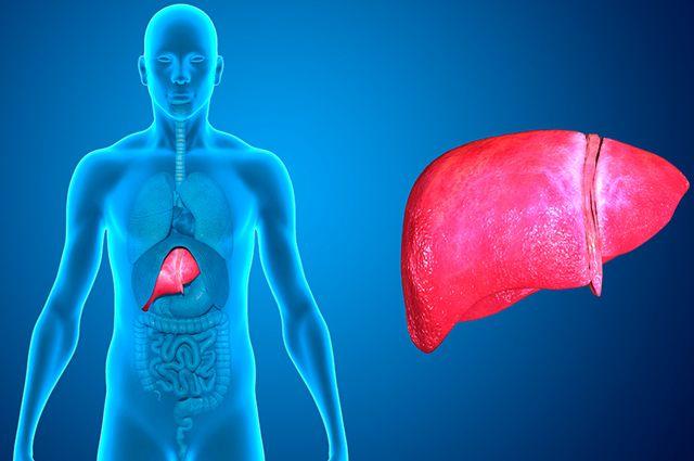 Olhos amarelos, fezes claras e barriga inchada são sintomas da gordura no fígado