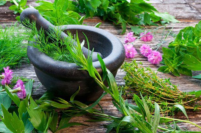 O suco de ervas é um tratamento caseiro capaz de aliviar os sintomas da sinusite