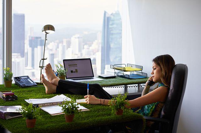 No ambiente de trabalho, o poder de cura dos jardins reduz estresse e ansiedade