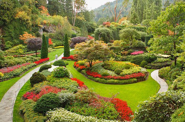 Os jardins terapêuticos possuem cores, formas e texturas distintas