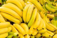 Quantas calorias tem uma banana?
