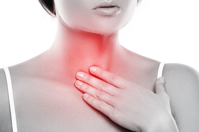 As cordas vocais são 2 faixas de músculos e membranas dentro da laringe
