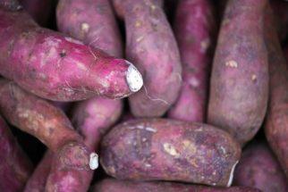 Quer fazer batata doce no micro-ondas? Nós ensinamos!