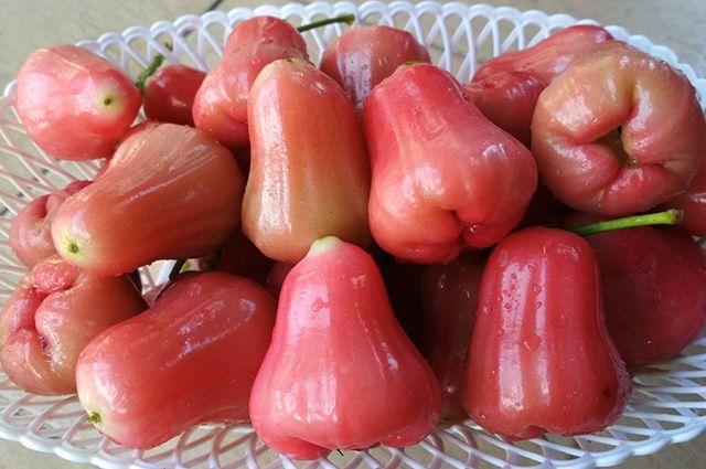 Jambos rosa no prato