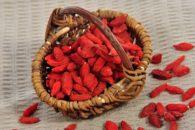 10 benefícios do goji berry