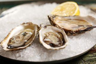 Quais os benefícios das ostras