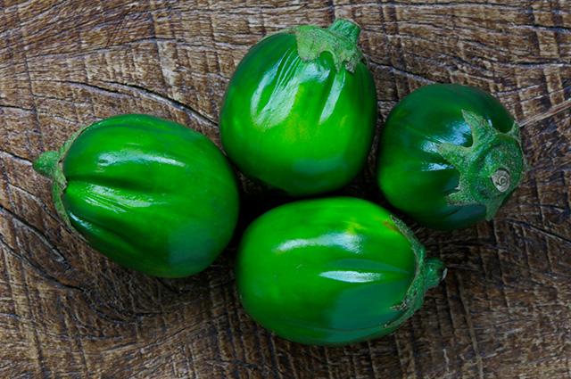 Quatro jilós verdes